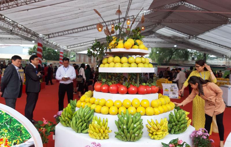 Khai mạc Festival sản phẩm nông nghiệp và làng nghề ...